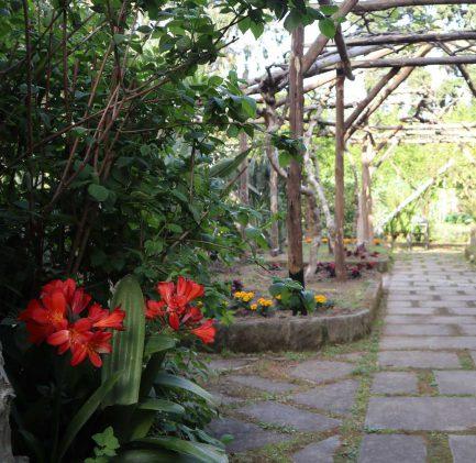 Garden | Sant'Anna Institute